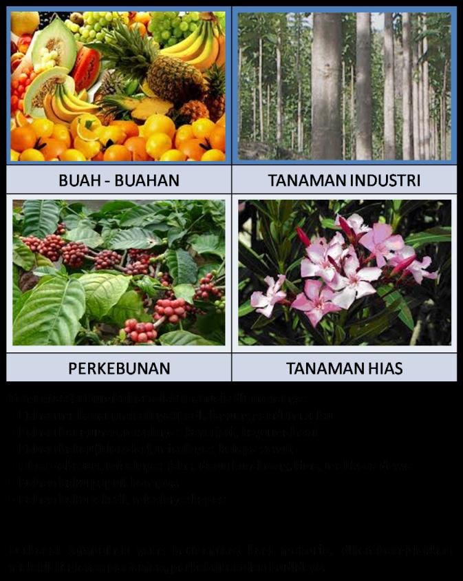 Sumber Daya Alam Dapat Diperbaharui : sumber, dapat, diperbaharui, GAMBAR, SUMBER, DAPAT, DIPERBAHARUI, TIDAK, Freewaremini